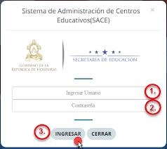 Proceso de consulta de la institución