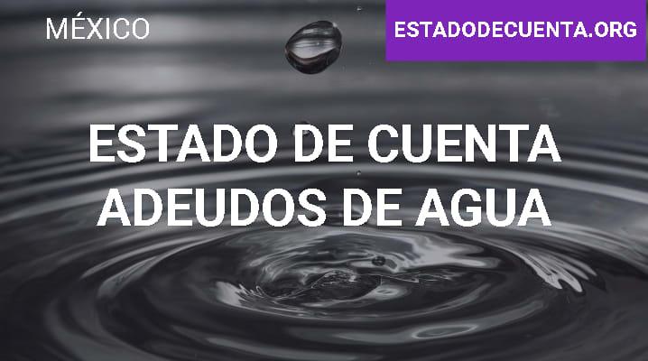 Estado de Cuenta Adeudos de Agua